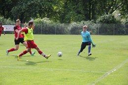 A-Junioren gewinnen gegen den Lübtheener SV Concordia mit 6:2 und werden Tabellendritter der Liga
